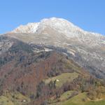Lombarijde, Arera, flora, orobische, alpen, noord italie