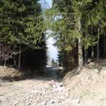 ItaliAdesso-Vakantie-bestemming-Noord-Italie-Dossena-bospad