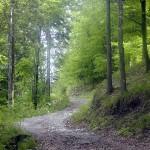 actieve-vakantie-wandelen-noord-italie-valle-brembana-orobische-alpen (10)