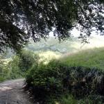 actieve-vakantie-wandelen-noord-italie-valle-brembana-orobische-alpen (3)