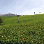 hotel-noord-italie-valle-brembana-zambla-alta-neve (5)