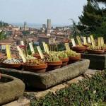 orto-botanico-bergamo-noord-italie-4