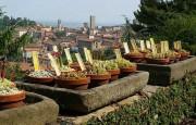 orto-botanico, botanische-tuin, bergamo, stedentrip, noord-italie