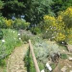 orto-botanico-bergamo-noord-italie-7